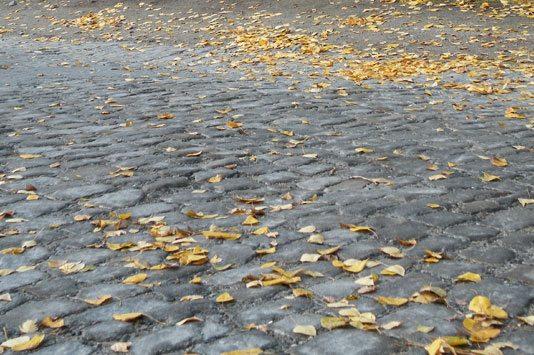 С этой старинной брусчатки можно начать историческую прогулку по кварталу