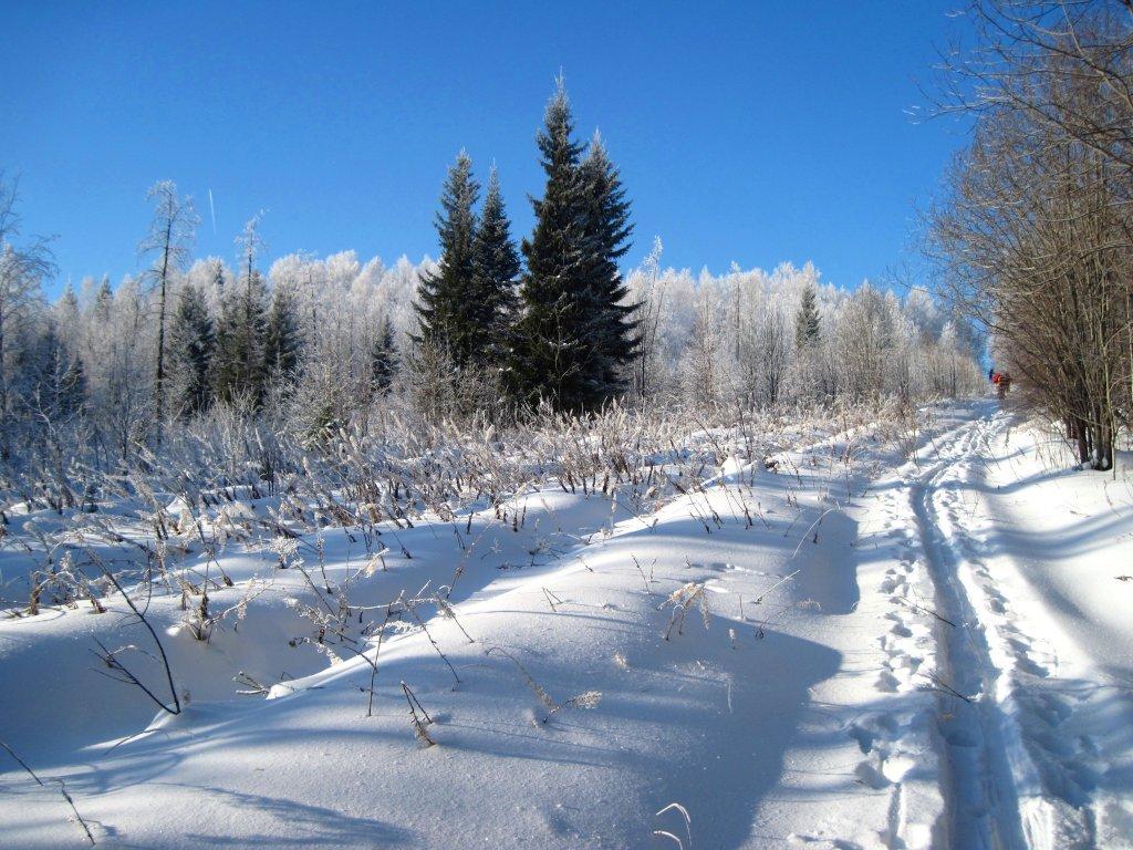 Прогулка на беговых лыжах Вершина - Исеть