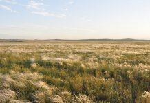 10 чудес Оренбургской области