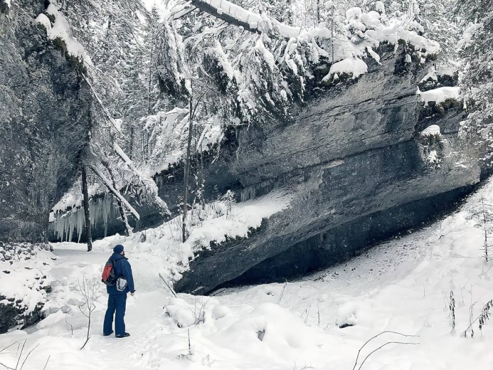 каньон ручья Мельничный