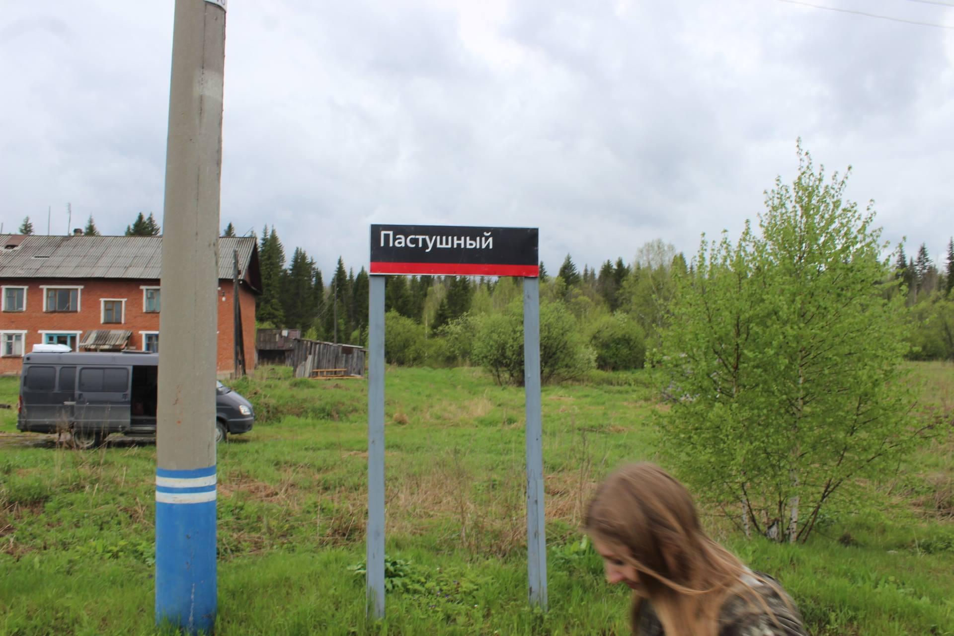 Свердловская область, Шаля, интересное на Урале, куда пойти за черемшой, черемша, Красная книга Свердловской области