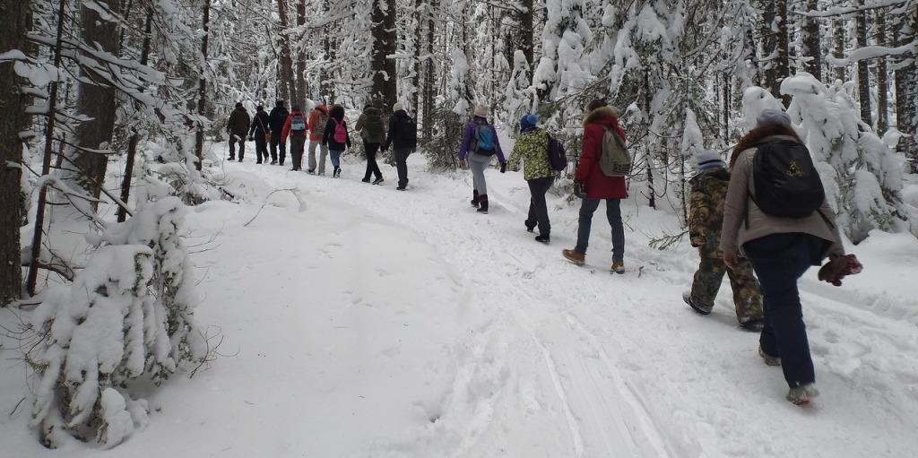 7 декабря: конференция «Что делать в Новогодние каникулы на Урале, чтобы не было мучительно больно за напрасно прожитые дни января»
