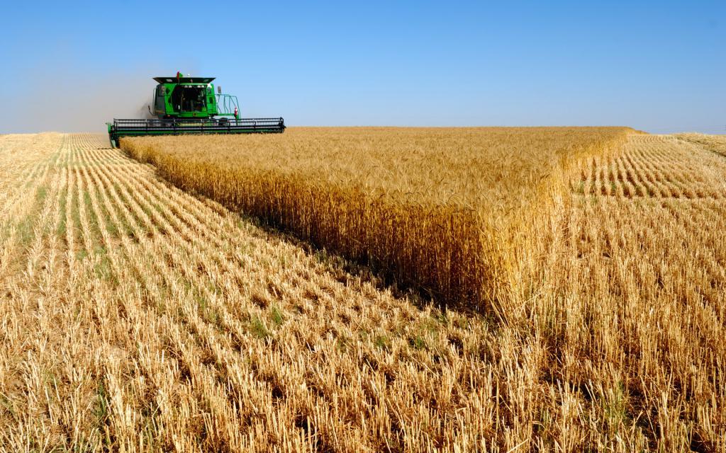 Свердловская область, сельское хозяйство, индивидуальное фермерское хозяйство, необычные фермы Свердловской области, хаски-парк, долина коз, страусиная ферма, оленья ферма, крокодилвиль, питомник ездовых оленей