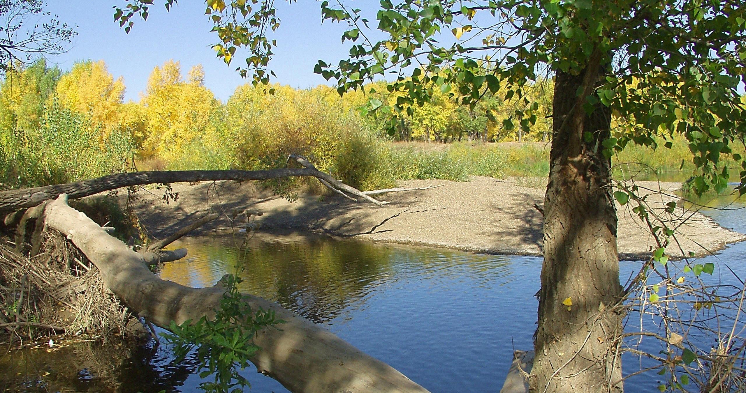 Красивая легенда об озере Базар-Бикет