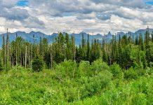 Двухнедельный поход по природному парку Ергаки (Красноярский край) буквально пролетел, оставив под 100Гб фото, которые еще предстоит разобрать. На фото далекие Ергаки - панорама с трассы Абакан-Кызыл