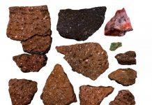На берегу Визовского пруда нашли стоянки древних людей