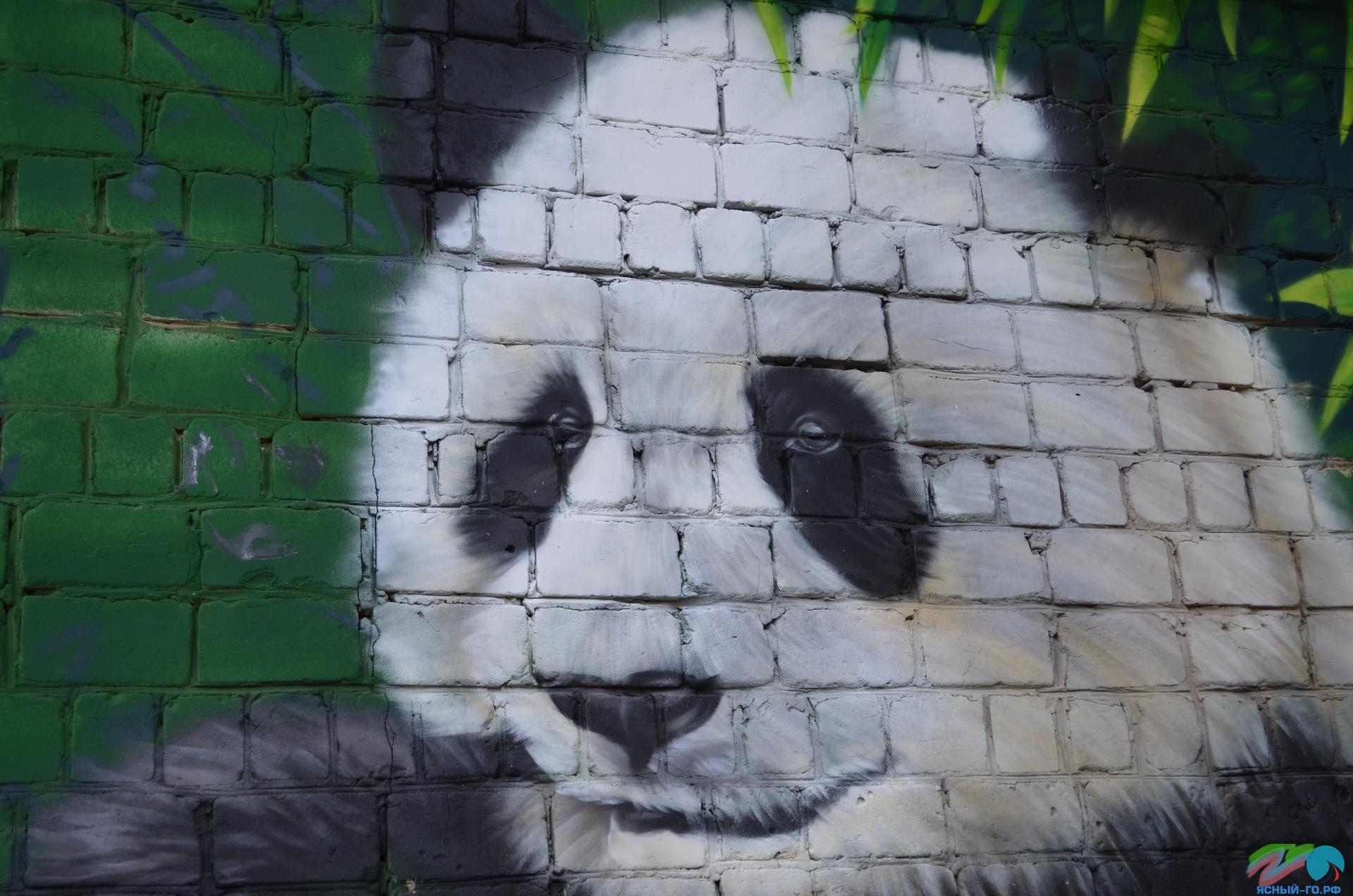 Оренбургская область, Ясный, город Ясный, малые города, фестиваль Город-Арт, фестивали Урала, интересное на Урале, фестиваль граффити, Малые города - удивительные достопримечательности,