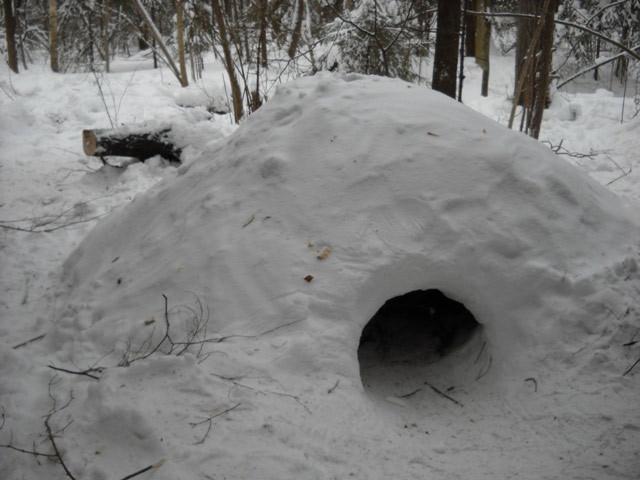 ЭКСПЕРИМЕНТАЛЬНАЯ НОЧЕВКА в зимнем лесу
