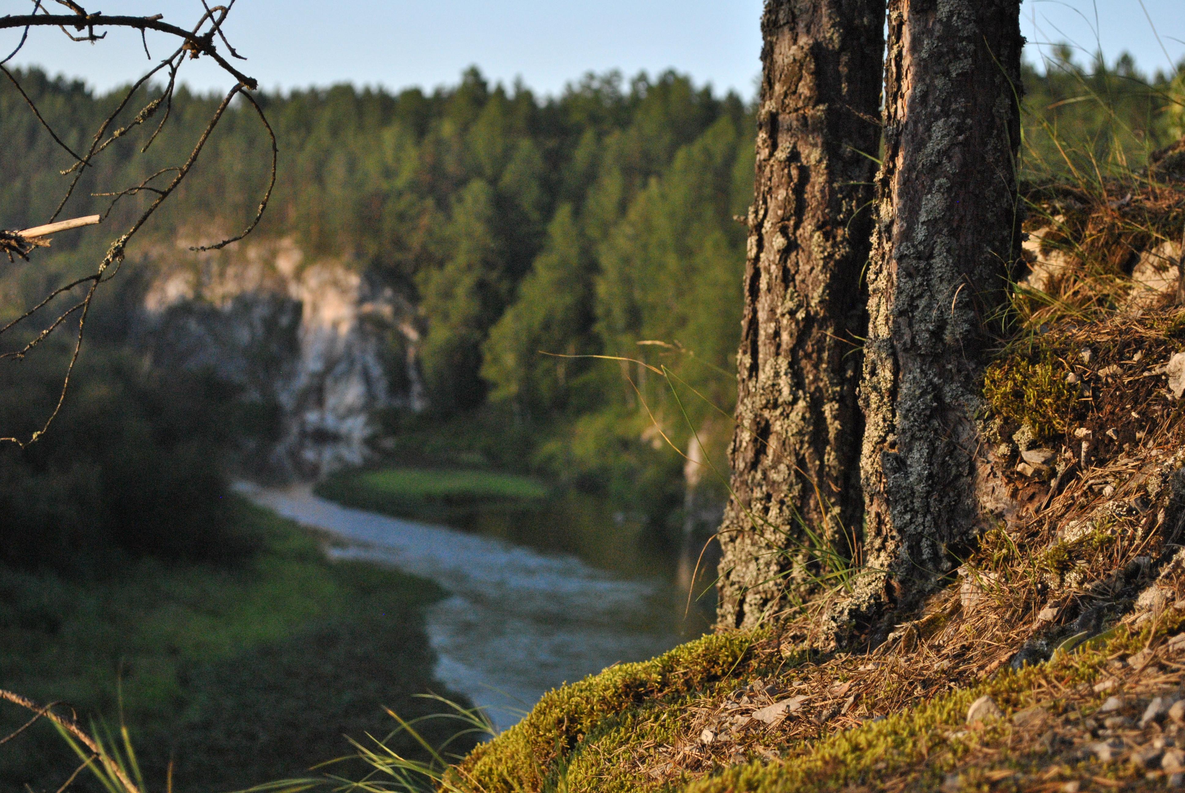 Свердловская область, река Серги, отдых на природе, природный парк, Оленьи ручьи, история, Средний Урал