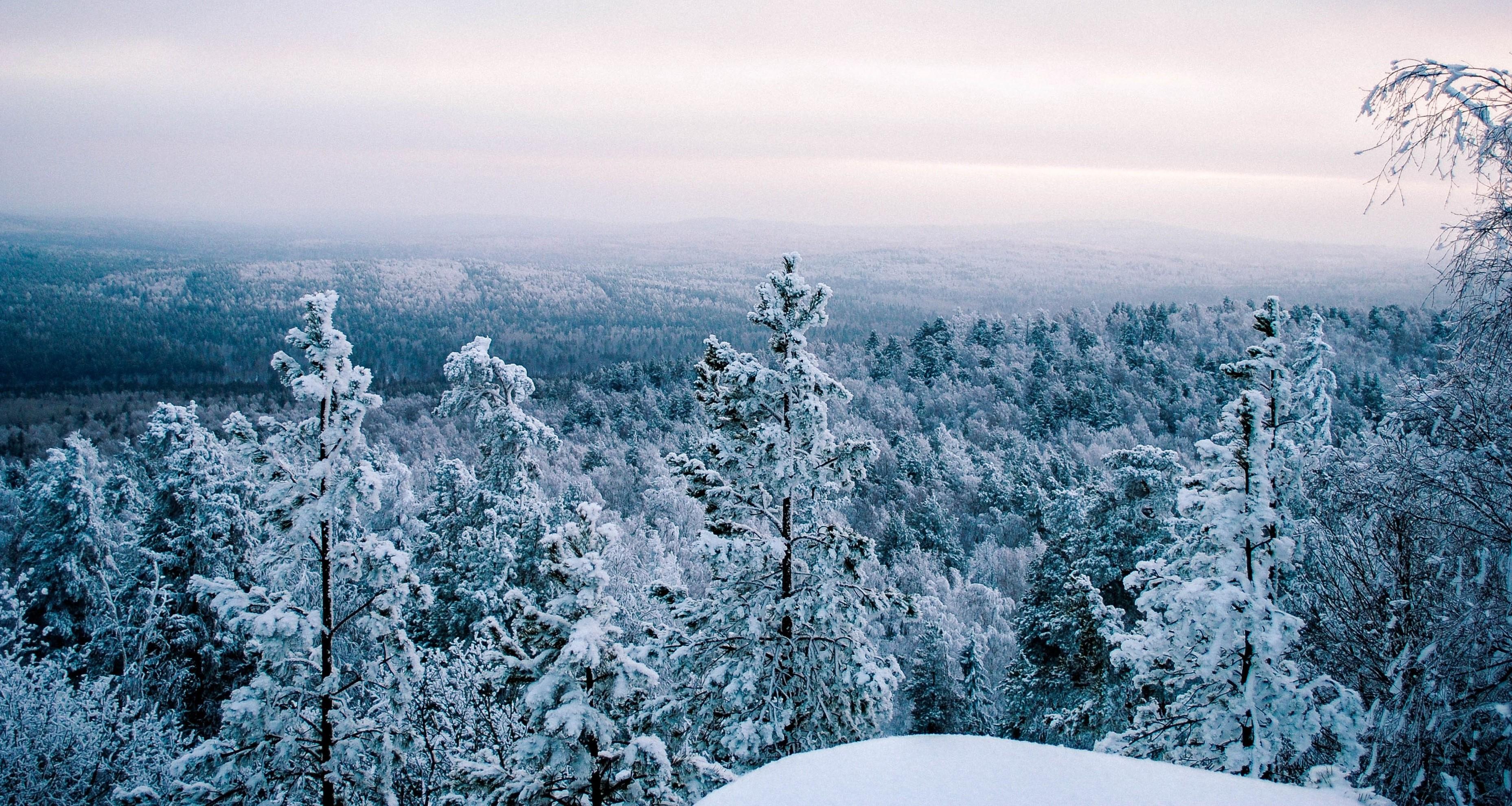 природа Свердловской области, особенности природы, Азов гора, флора и фауна Свердловской области, природные достопримечательности