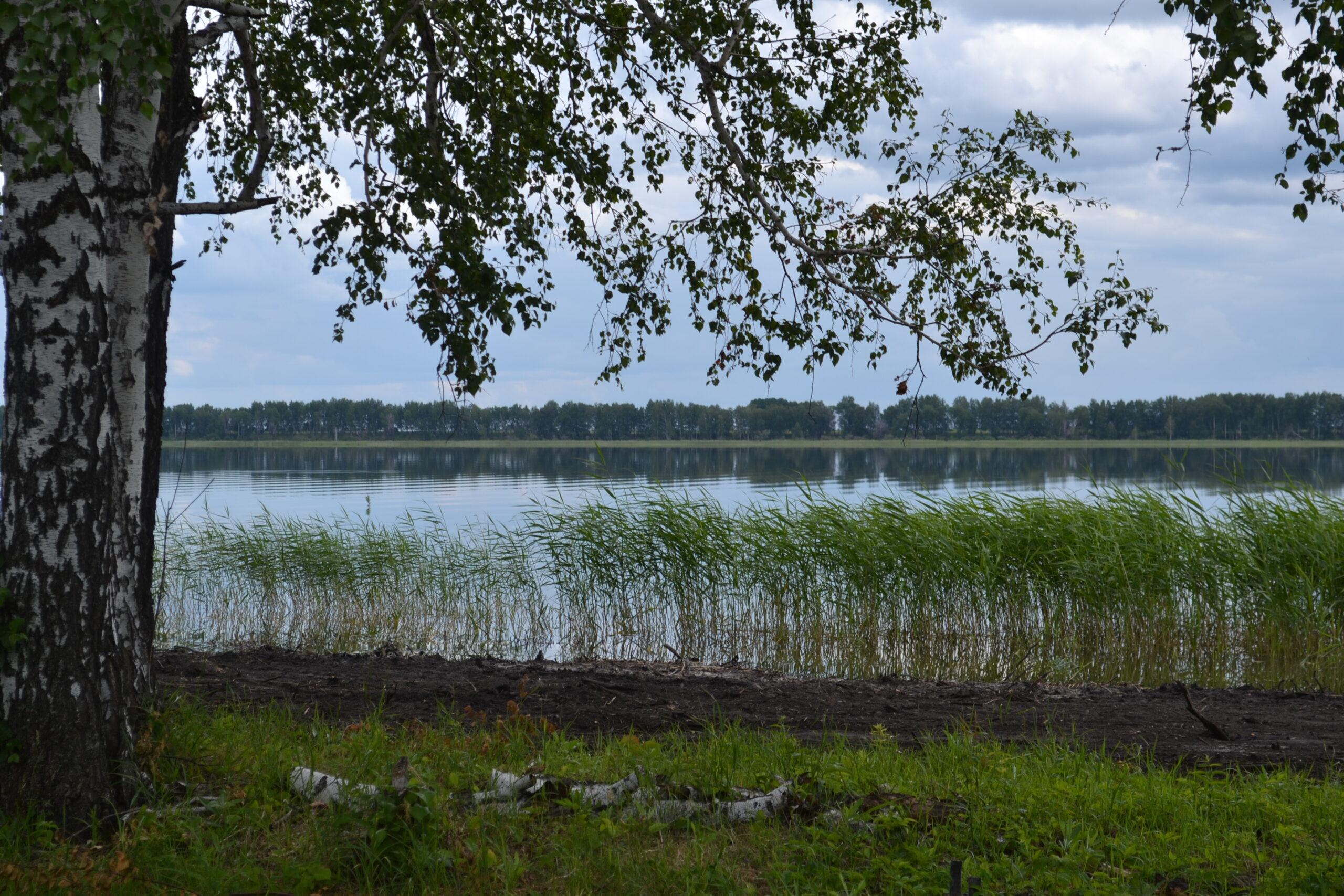 Абасткое, село Абатское, Тюменская область, озеро Маруха, природа Абатского, Малые города - удивительные достопримечательности,