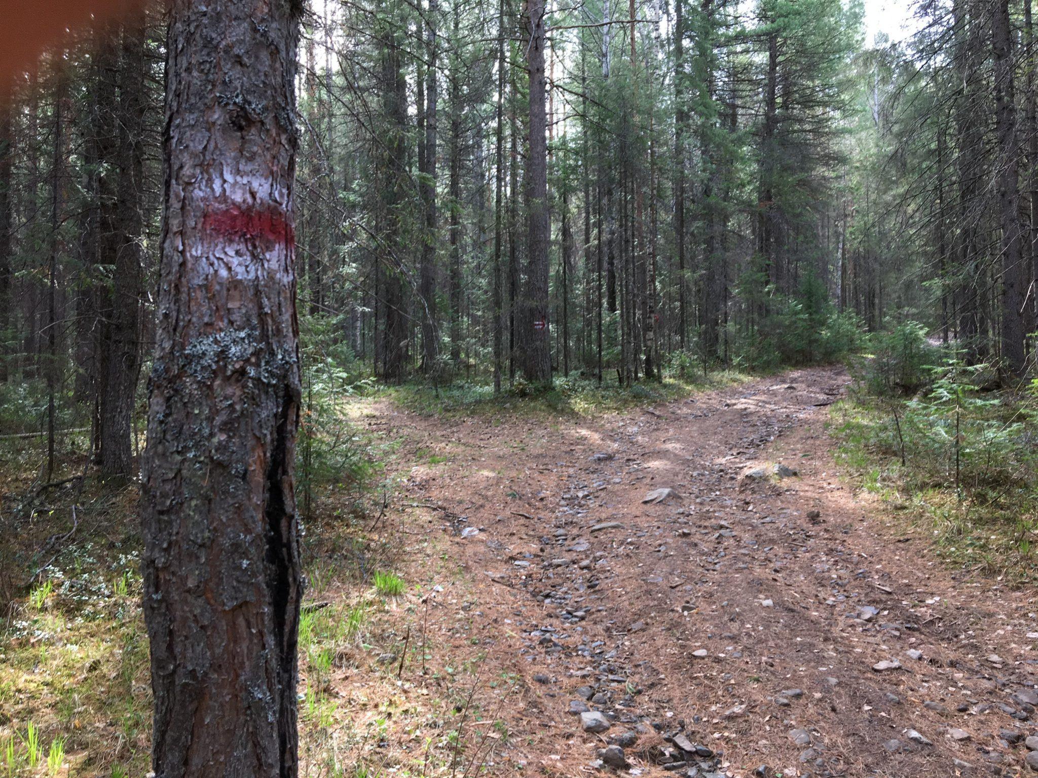 Качканар: попытка №1 промаркировать маршрут