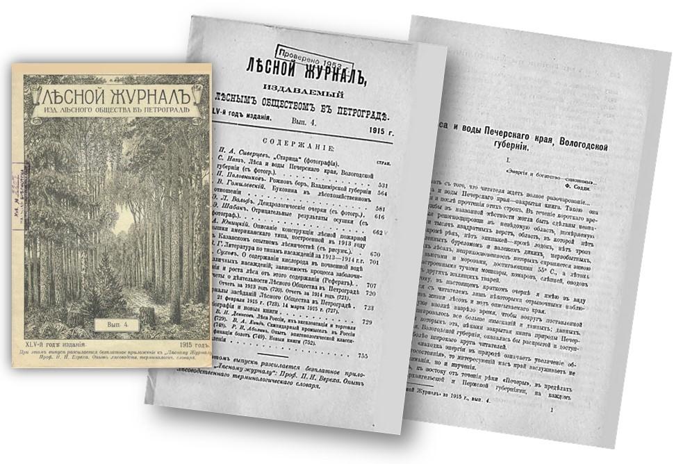 Лесной журнал коллаж