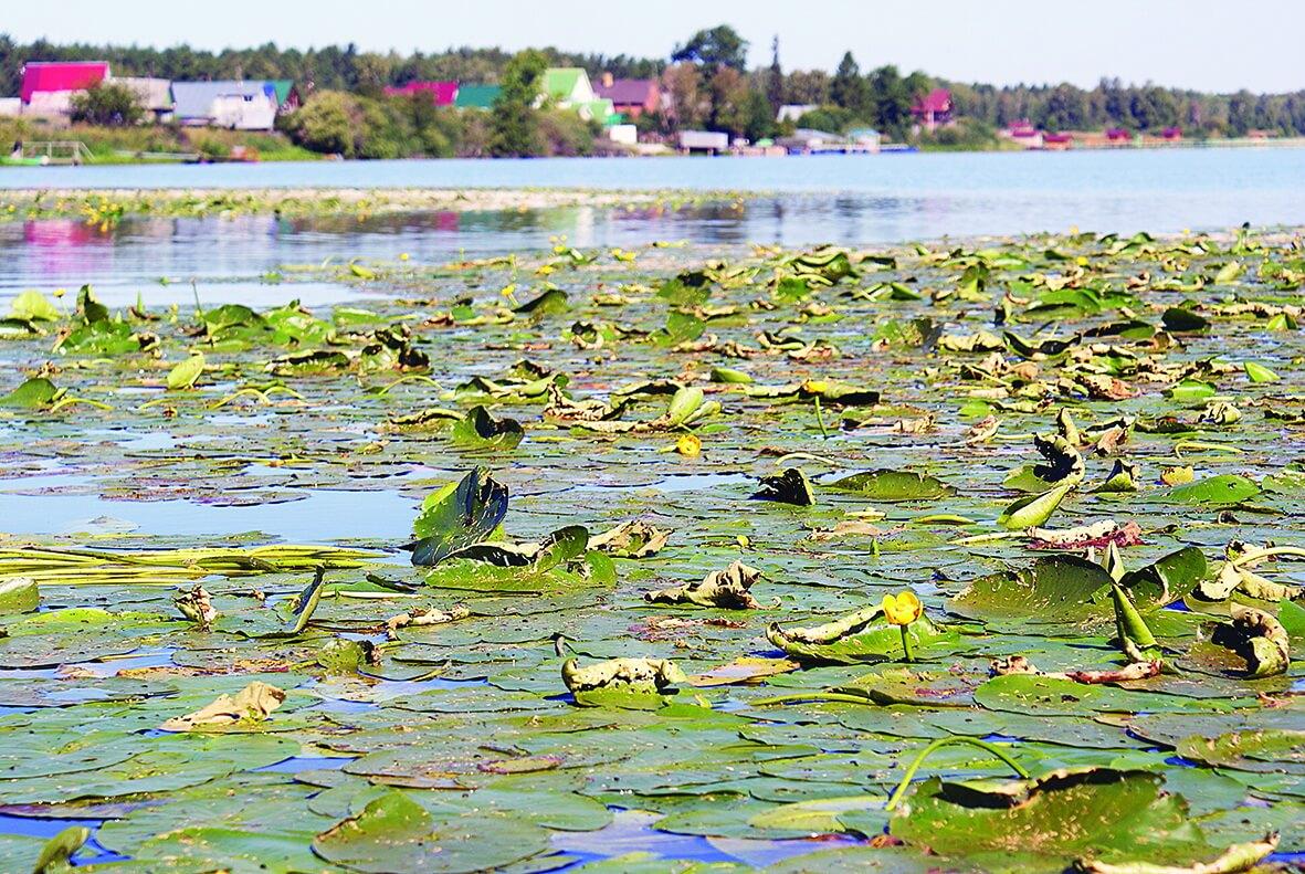 Озеро Ирбитское, Малый Таушкан