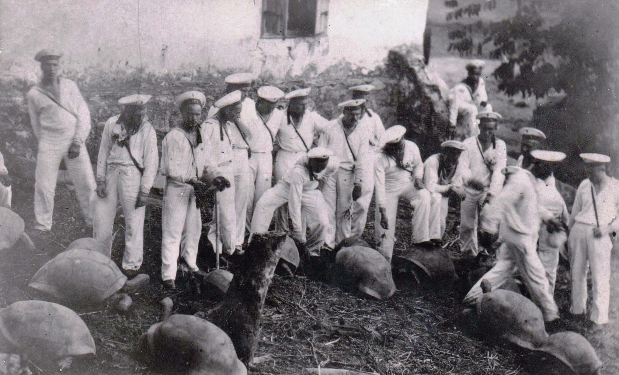 Матросы крейсера «Варяг» с черепахами. Сингапур 1916 г.