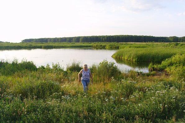 Моховое озеро