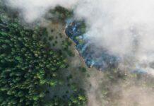 пожары на Урале, лесные пожары, Башкирский заповедник, Денежкин камень, Тургояк, озеро Тургояк,