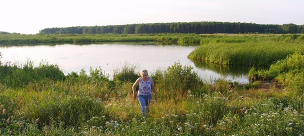 Путешествие по родному краю V — Моховое озеро