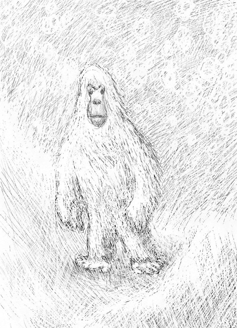 Снежный человек, Йети, Приполярный Урал