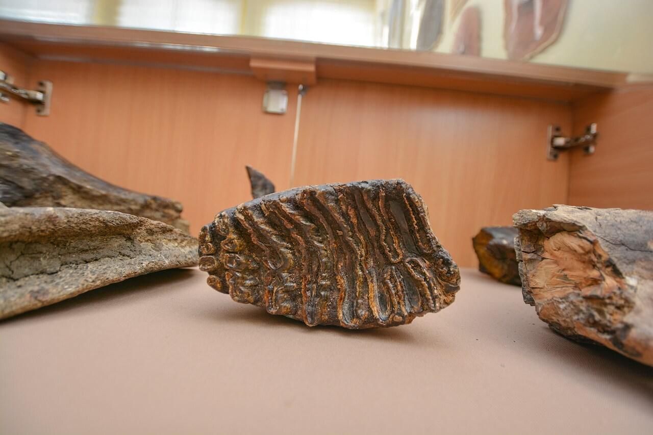 Археологические находки в Камышлове