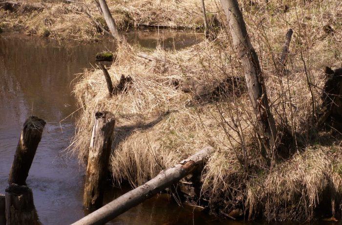 Линия Ильинская — Лесозавод