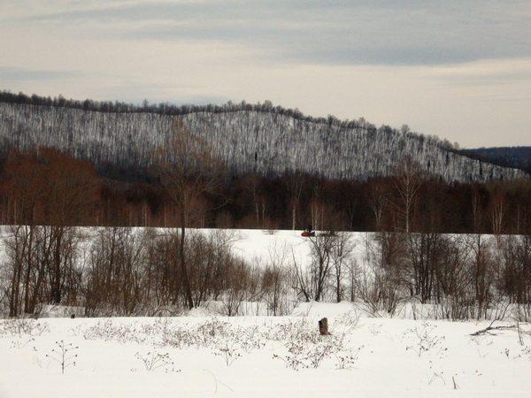 Местный снегоход с санями