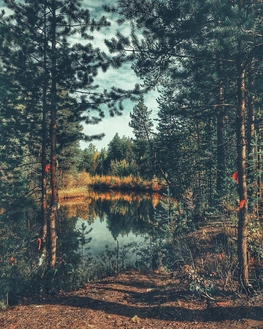 Барсово, Барсова гора