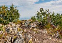Башкирское кольцо: Гора Арвякрязь