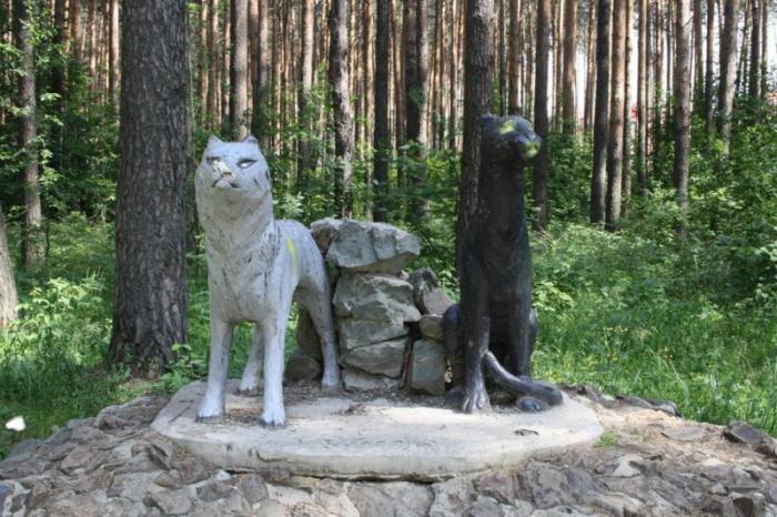 Тропа здоровья, Березовский, Свердловская область