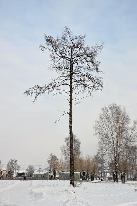 Билимбаевская дача