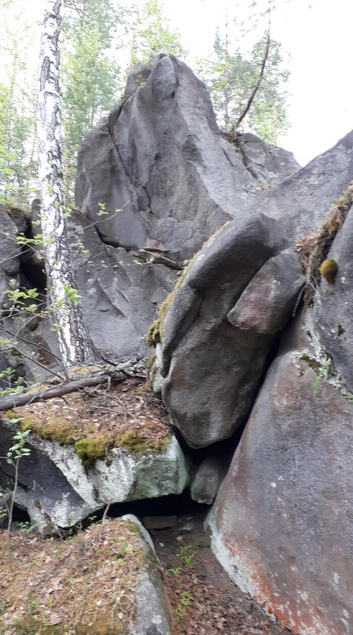 Северка, болото Хохотун, останцы Кролики