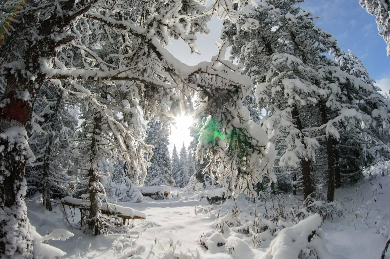 Хребет Иремель, Челябинская область, Южная Урал