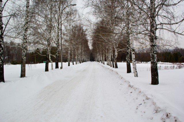botanicheskiy-sad-ufa04