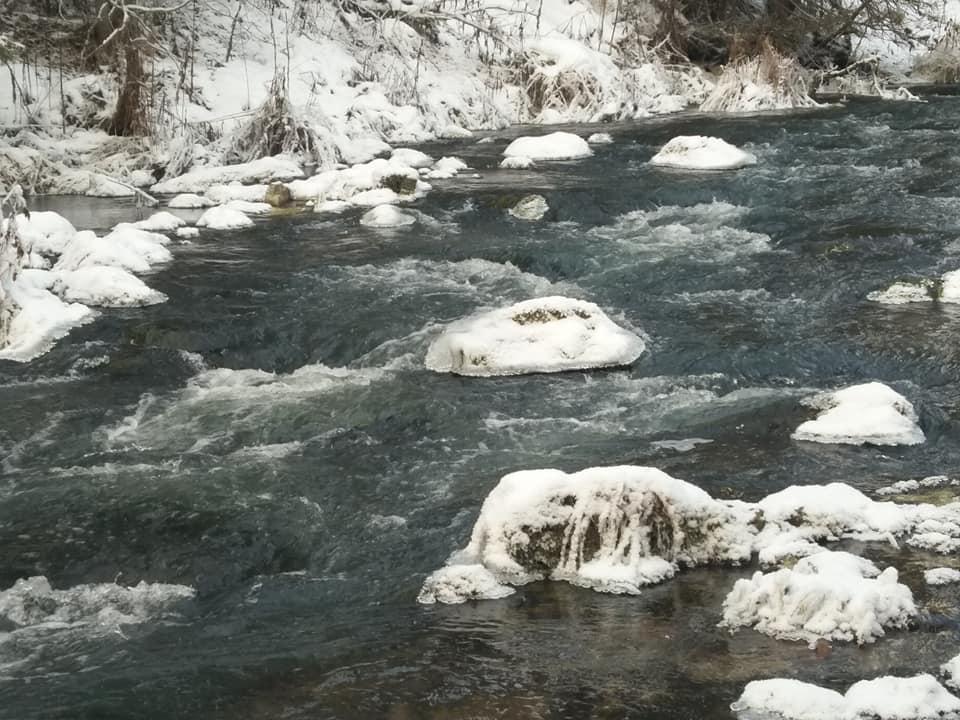 Река Березовка