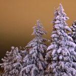 11 чудес ХМАО-Югры: самые известные памятники природы и архитектуры