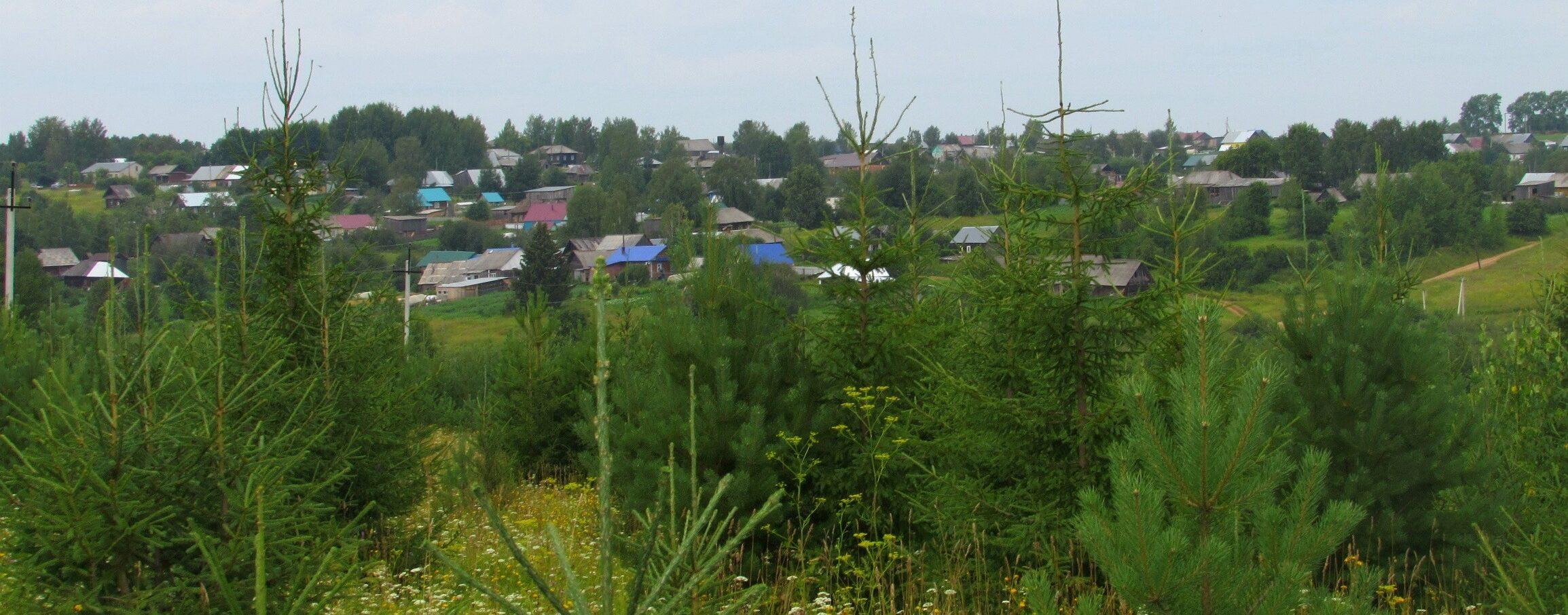 Эколого-туристическая тропа в д. Соколово (Верещагинский район)