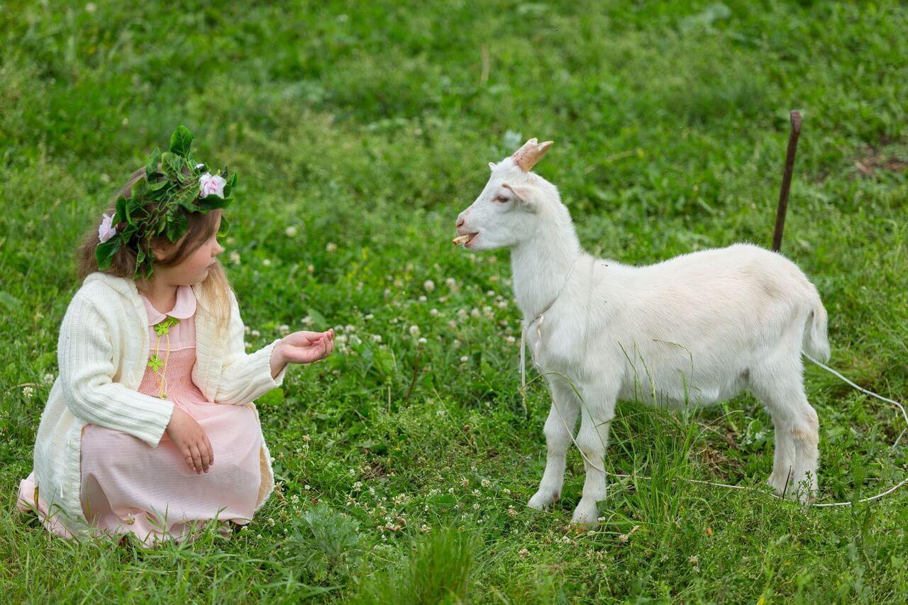 Долина коз, Деревня Паршина, Свердловская область