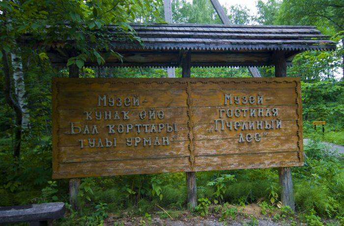 Музей-гостиная «Пчелиный лес»