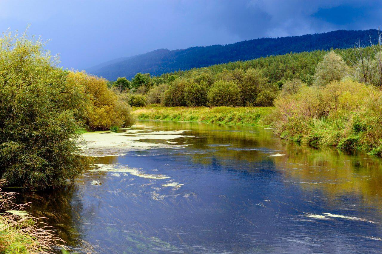 Река Миасс, Ильменский заповедник, Челябинская область, Южный Урал