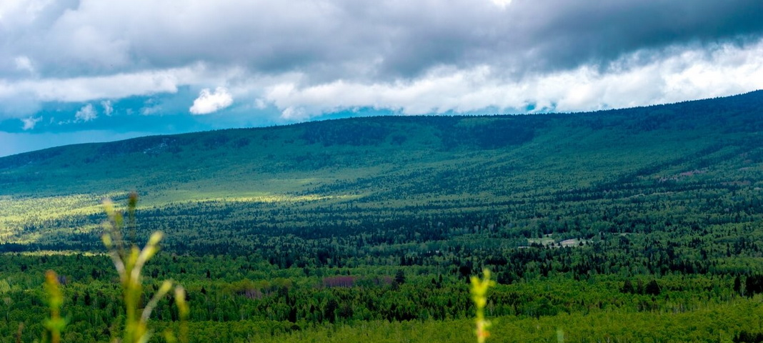 Гора Карандаш, Аршинский заказник, Челябинская область