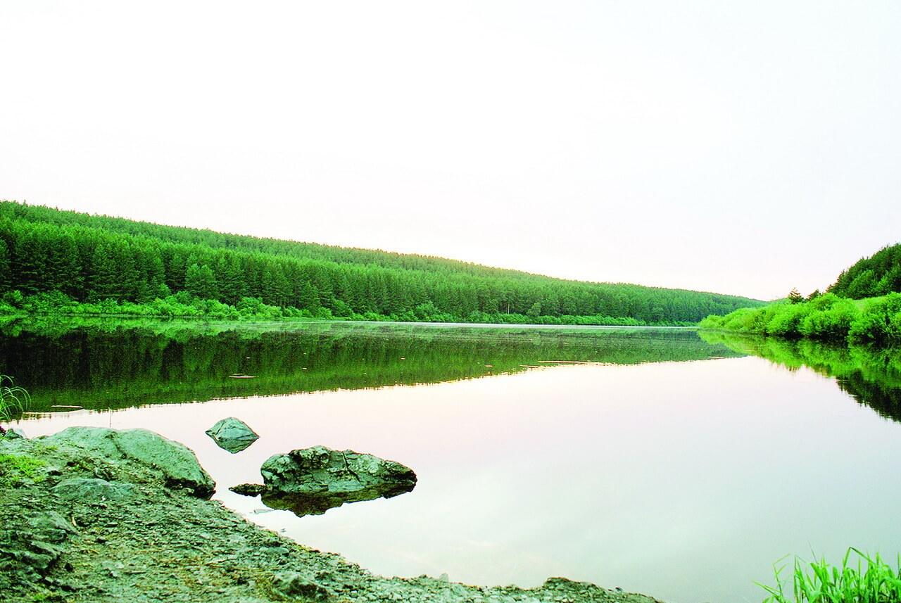 Городская плотина, Гортоп