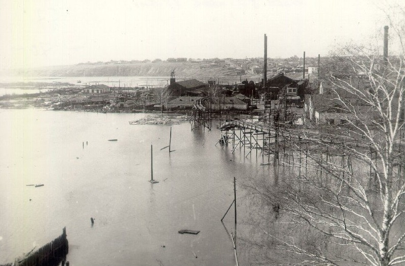 Добрянский металлургический завод в 1950- 1955 гг
