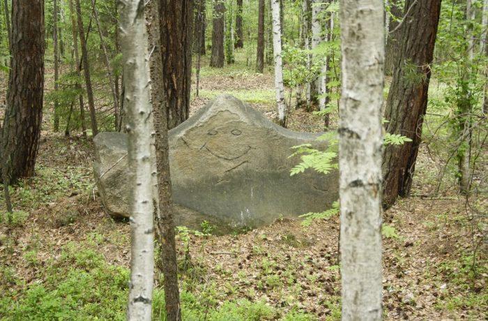 Камни бывают разные. Этому кто-то пририсовал глаза и рот. Получилось прикольно.