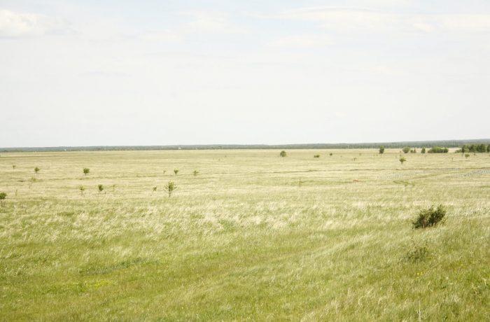 на многие километры простирается типичная степь, и это-то на Урале