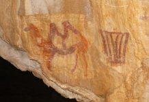На Южном Урале нашли изображение верблюда, Капова пещера