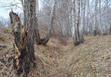 Кызылташская крепость