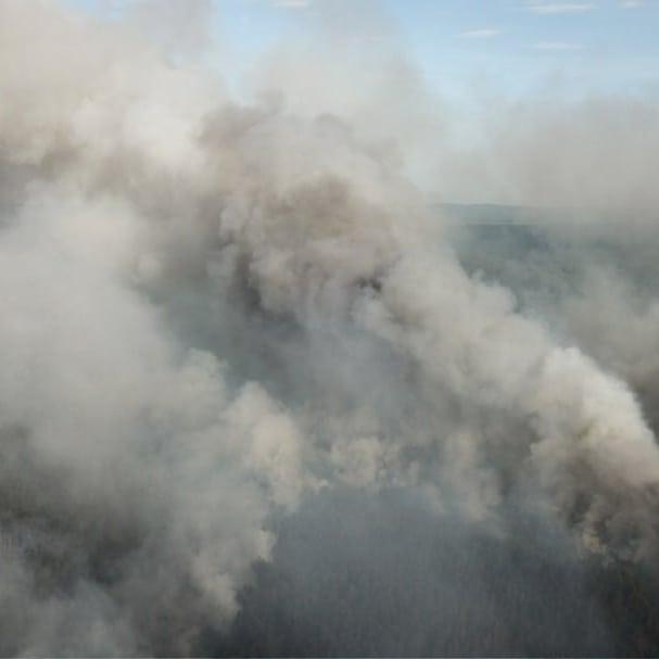 лесной пожар_И.Байзигитов
