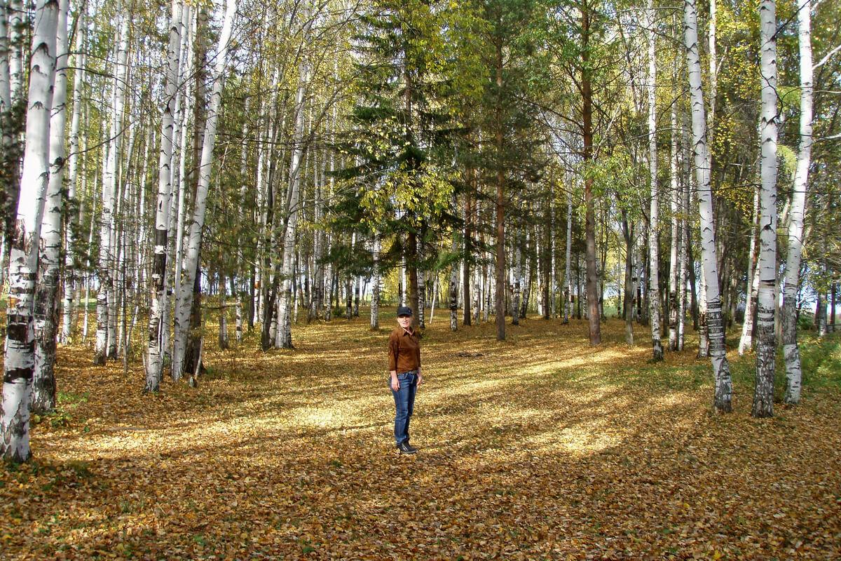 Лесопарк, Нижняя Тура, Свердловская область