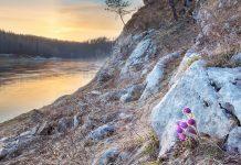 Сплав по реке Чусовой от Кын-Завода до Чусового: первый и второй день