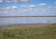 Озеро Медвежье: описание, как добраться и фото